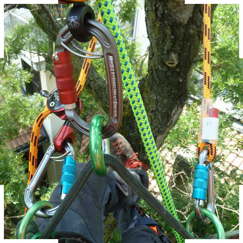 materiale tree climbing