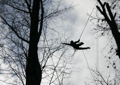 treeclimbing_2